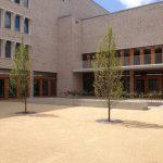 Latinum in 4 Wochen in Stuttgart